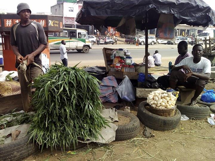 Cela fait six ans que Ibrahim fait ce métier. La vente des feuilles au marché de bétail d'Abobo lui rapporte en moyenne 12 mille francs CFA par jour.