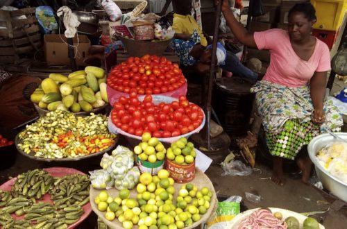 Article : Vivrier, une mesure de pesage impopulaire risque de paralyser le secteur et créer l'inflation !