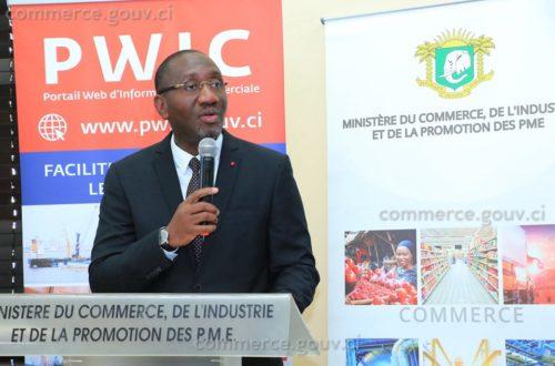Article : PWIC, le nouveau portail web ivoirien d'information commerciale